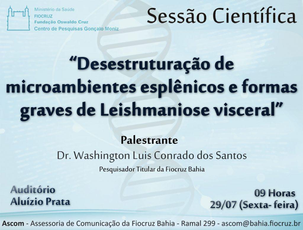 sessão 29 de julho