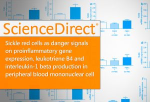 16-Sickle-red-cells-as-danger-signals