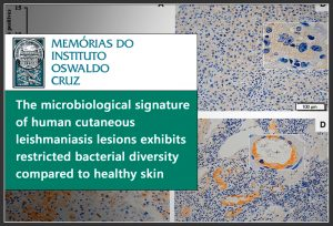 25-the-microbiological-signature-of-human