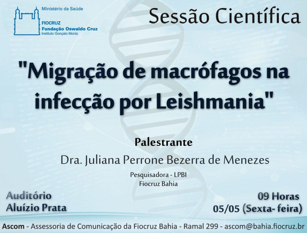 04 05 -Juliana-Perrone-1024x778