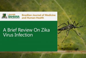 brief review of zika copy
